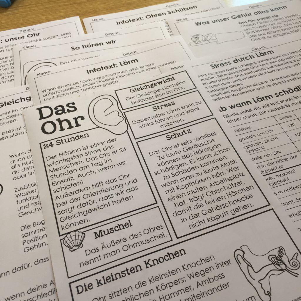 Verschiedene Infotexte zum Ohr für die Grundschule