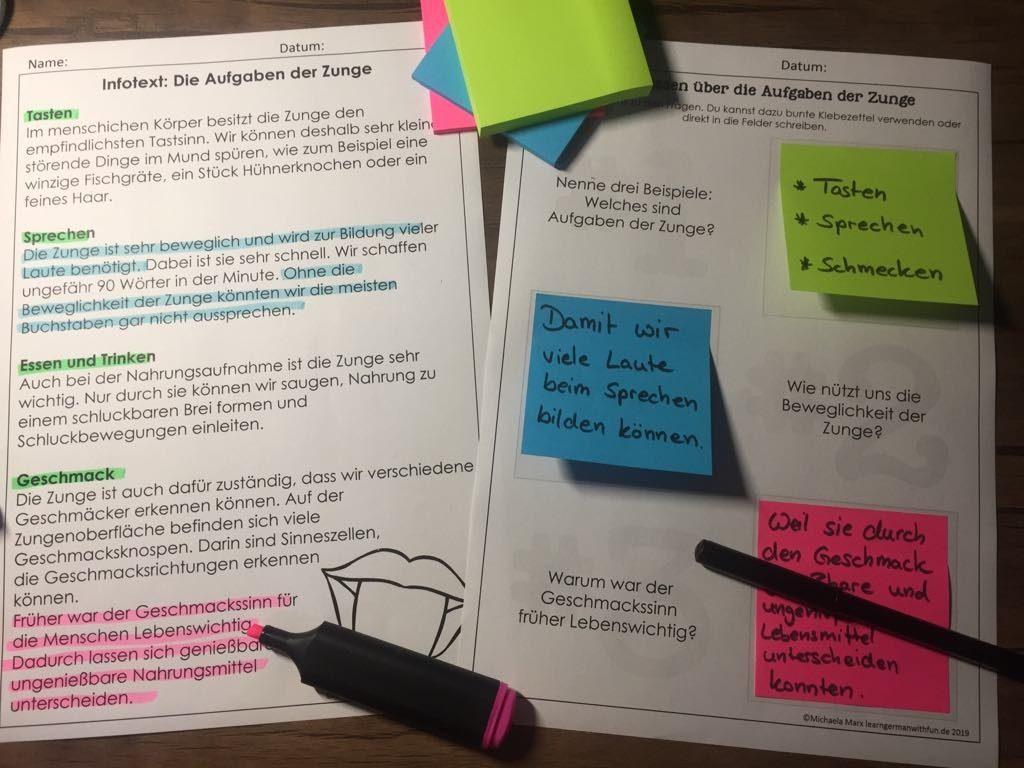 Biologie Unterrichtsmaterial zur Zunge- Infotext mit Arbeitsblatt