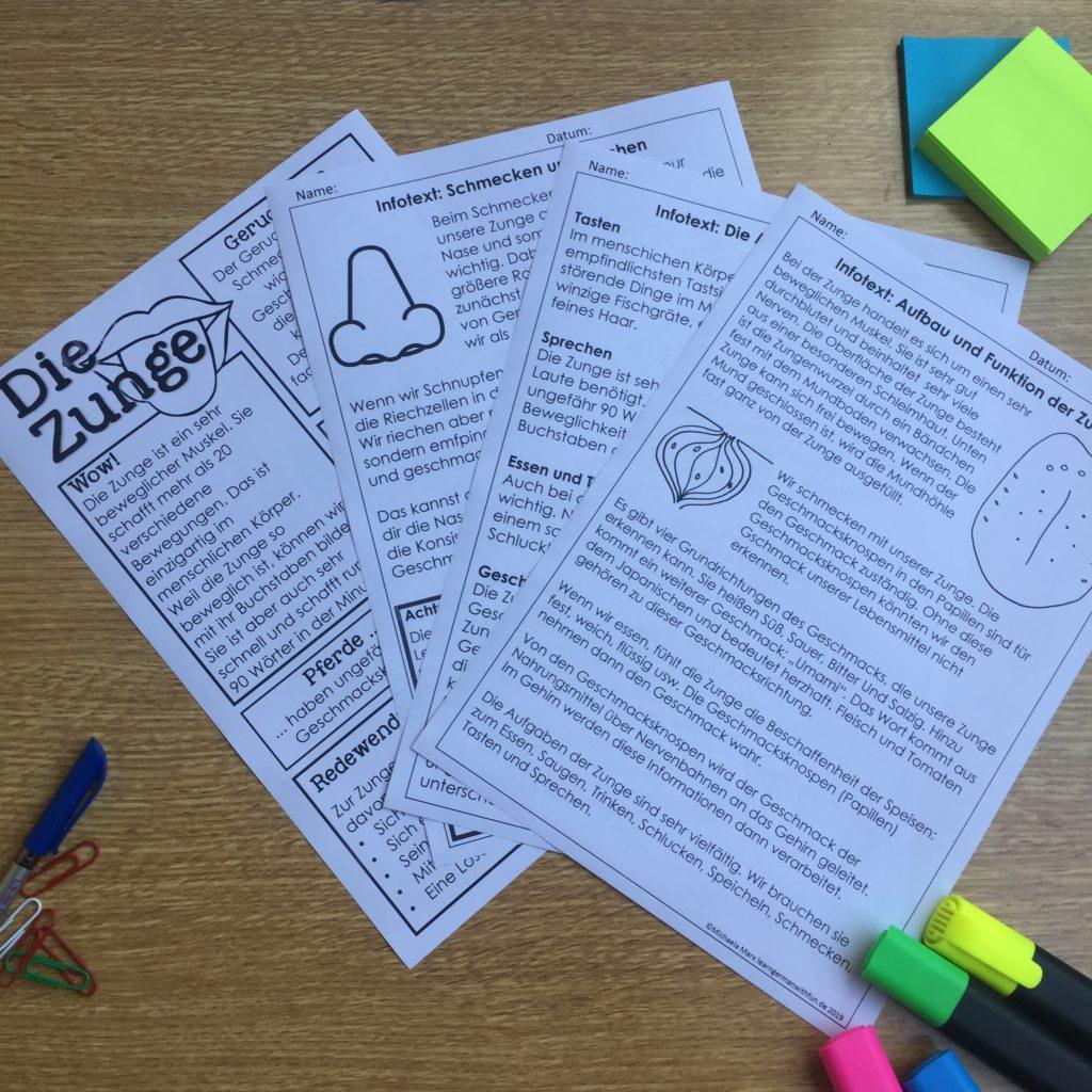 Infotexte zum Thema Zunge für den Biologie oder Sachunterricht