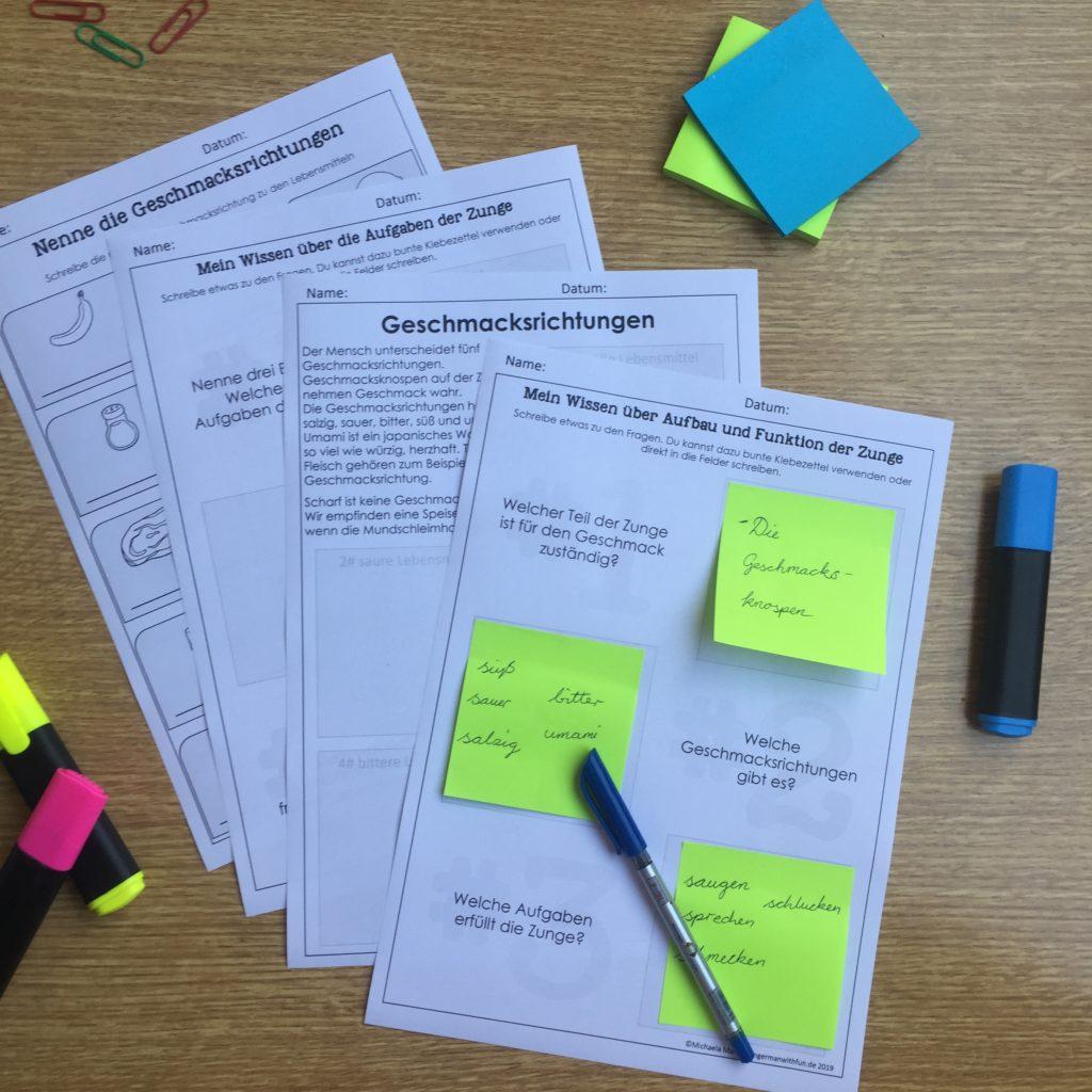 Unterrichtsmaterialien : Arbeitsblätter zu Zunge und Geschmackssinn