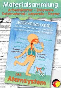 Atemsystem Unterrichtsmaterial
