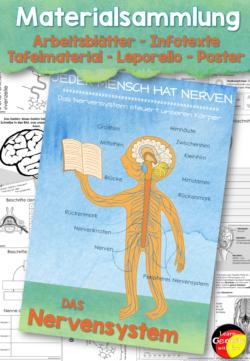 nervensystem Unterrichtsmaterial